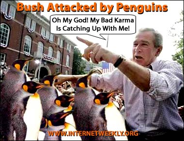 Bush penguins cartoon